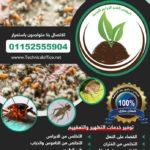 تعقيم وتطهير ومكافحة الحشرات والقوارض