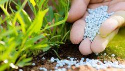 مبيدات و أسمدة زراعية